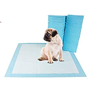 TAIYO PLUSS DISCOVERY®/Dog Training Pads/Size:XL/60×90 cm/40 Count/Training Pee and Potty Pads with Quick Drying Surface…