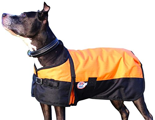 Derby Originals 600D Medium Weight Waterproof Breathable Insulated Dog Coat, X-Large, Orange by Derby Originals