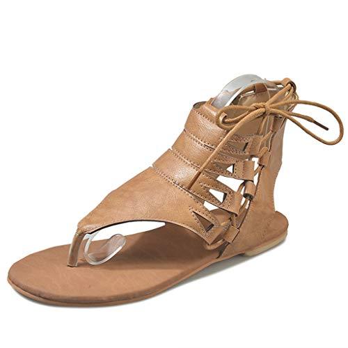 Women's Santini Cutout Lace-Up Open Toe Ankle Strap Gladiator Sandal Zipper Flat Bottom pin Cool Shoes Brown ()