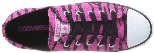 Converse Dainty Zebra Ox 362550-52-21 - Zapatillas de tela para unisex-adultos, color rosa, talla 36 Rosa (Rose (Fuchsia/Noir))