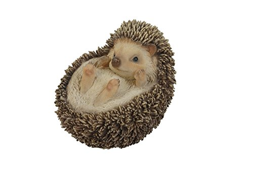 Hi-Line Gift Ltd Hedgehog on Back Statue