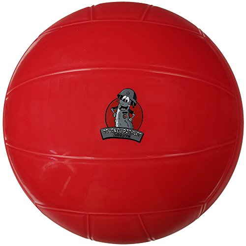 Colonel Pickles Novelties Pool Volleyball for Swimming Pool & Water Volleyball Set Game Play - Water Absorption Free Ball
