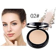 3D Concealer,Aritone Wet Dry Powder Facial Concealer Repair Powder 3D High-light Shadow Powder (B)
