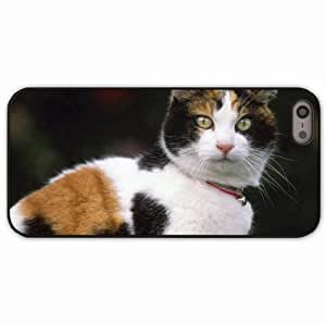 iPhone 5 5S Black Hardshell Case muzzle collar spotted Desin Images Protector Back Cover