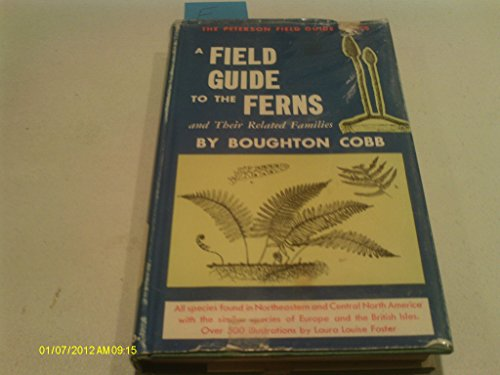 A Field Guide to the Ferns
