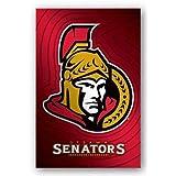 Ottawa Senataors Logo NHL 22x34 Art Print Poster by Trends International