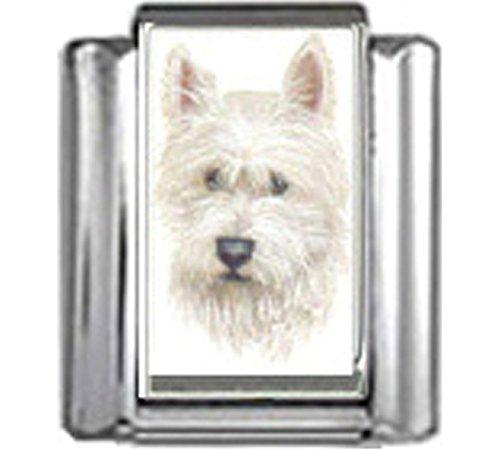 Stylysh Charms WEST Highland White Terrier Dog Photo Italian 9mm Link DG396