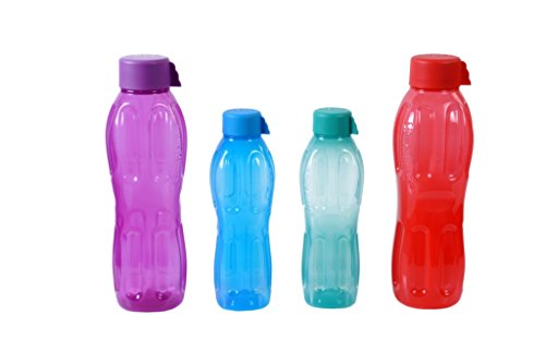 Signoraware Water Bottle Set, 4-Pieces, Multicolor