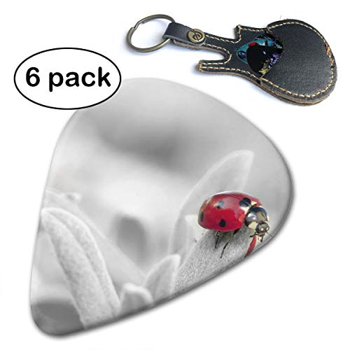 (Camp Ursula Spotted Ladybug On Leaf in Selective Color Acoustic Electric Bass Guitar Picks 6 Pack Thin Medium Heavy)