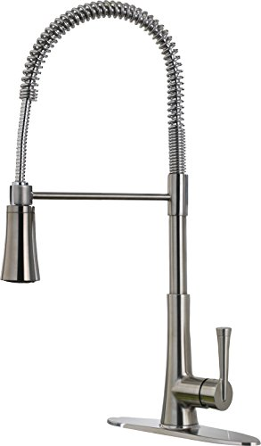 Pfister LG529MCS Zuri 1-Handle Pull Down Kitchen Faucet, Stainless Steel, 1.8gpm