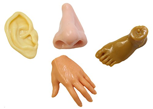 Body Parts Stretchy Fidgets - Ear, Hand, Foot Nose - Anatomy