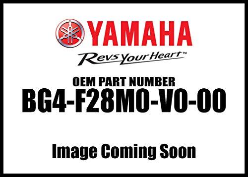 2018-2019  WOLVERINE X2 X 4 FRONT WINCH MOUNT KIT by WARN - YAMAHA BG4-F28M0-V0-00