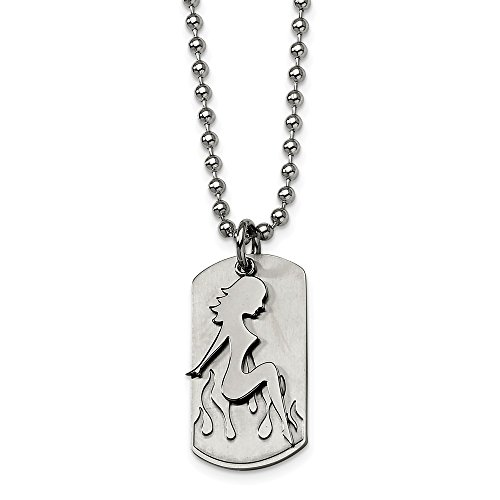 ICE CARATS Stainless Steel Girl Dog Tag 22 Inch Chain Necklace Man Pendant Charm Dogtag Fashion Jewelry Gift for Dad Mens for Him