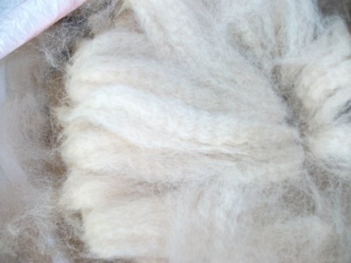 Fiber Alpaca - Cream white huacaya Cria Baby Alpaca spinning felting crafting Fiber Fleece