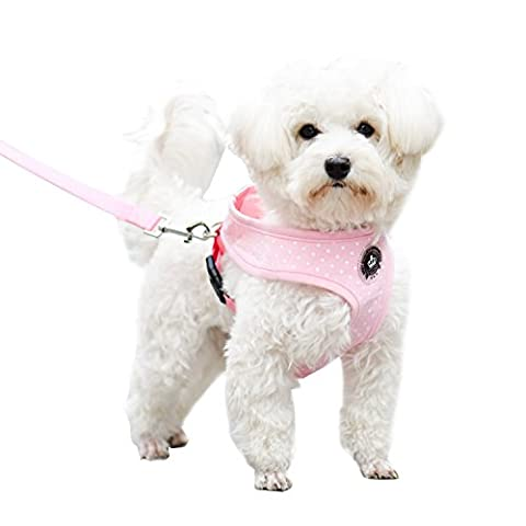 Pink Medium Soft Mesh Polka Dots Dog Harness with Matching Leash