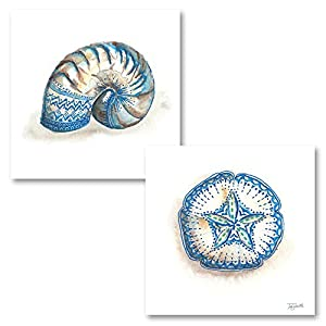 41AyYtS671L._SS300_ Best Sand Dollar Wall Art and Sand Dollar Wall Decor For 2020