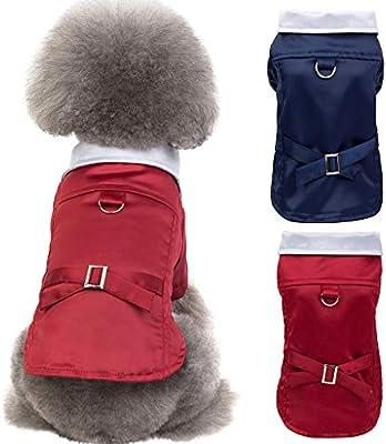 Traje de moda para mascotas, para otoño e invierno, para mantener ...
