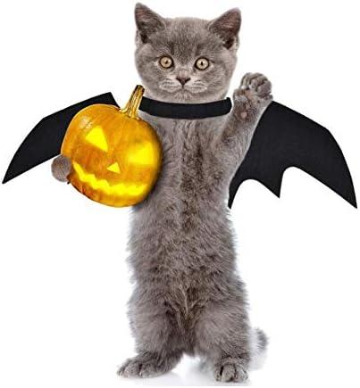 Grenhor Disfraz de Halloween para Perro, Gato, Vampiro, alas de ...