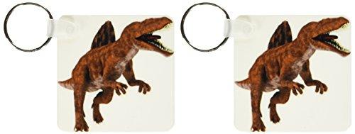 Attacking Set (3dRose A Spinosaurus Dinosaur Attacking Key Chains, Set of 2 (kc_178771_1))