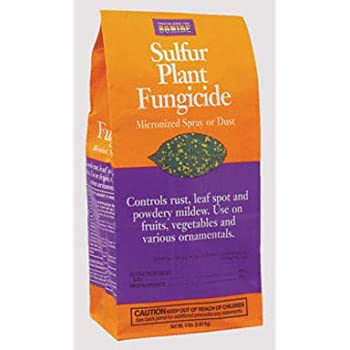 Bonide 142 Sulphur Dust Fungicide 4 Pound Home Pest Repellents Garden Outdoor