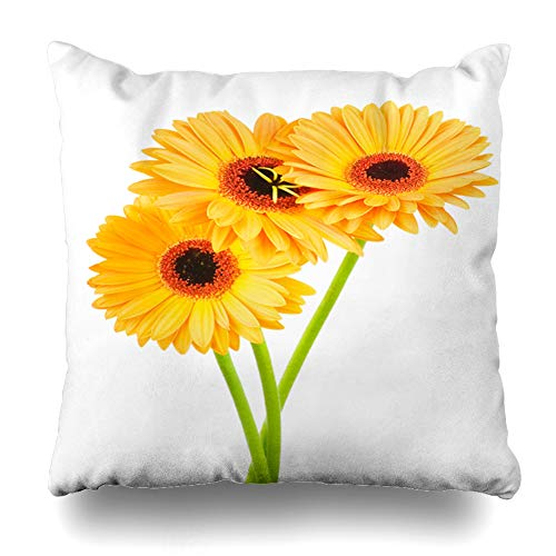 Ahawoso Throw Pillow Cover Square 20x20 Blooming Yellow Daisy Gerber Flowers Nature Orange Gerbera Bunch Stem Single Bouquet Flower Pillowcase Home Decor Cushion Pillow Case