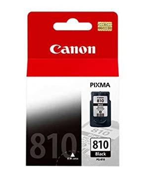 Amazon.com: Canon PIXMA pg-810 Fine Cartridge (Capacidad ...