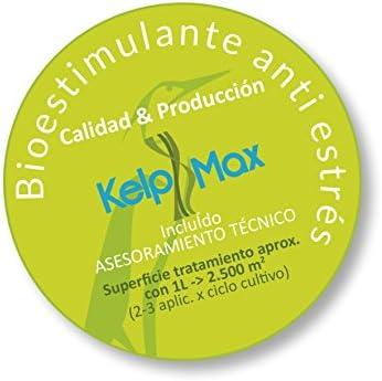 Pack BIGROOT®+ KELPMAX® (1000 m2)- Multinutrientes/Vitaminas/Algas ...