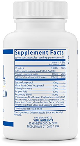 Vital Nutrients - Anti-Oxidant 20 Phytonutrient Complex - Specially Balanced Antioxidant Formula to Help Neutralize Free Radicals - 60 Capsules Discount