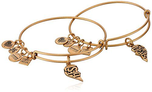 Alex and Ani Charity by Design, Best Friends Set of 2, Rafaelian Gold, Expandable