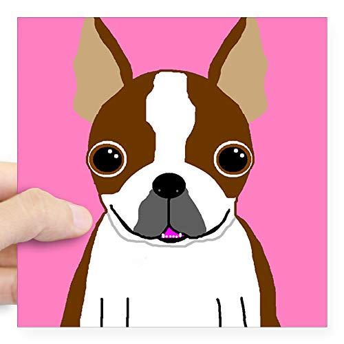 (CafePress Boston Terrier (Brown) Rectangle Sticker Square Bumper Sticker Car Decal, 3