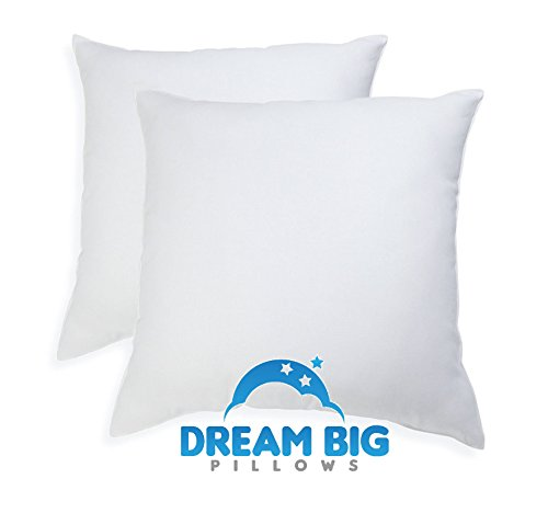 Euro Pillows Set of 2 (26 x 26 inch) Square Pillow Inserts for Decorative Bed Pillow Shams - Down Alternative, Filled in USA (X Form Pillow 26 26)