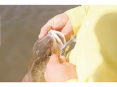 Berkley Gulp! Alive! Shrimp 11 OZ Bucket