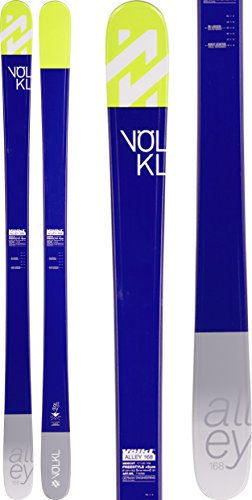 Volkl Twin Tip Skis - 2