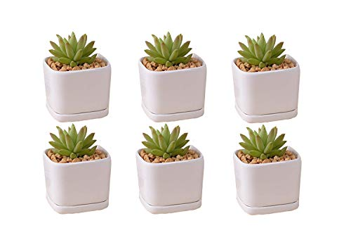 Mini 6 set 2 inch square Modern Minimalist White Ceramic Succulent mini Planter Pot/Window Box with Saucer (Square, 2inch) by SeaStar