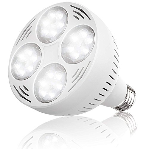 Jenaka 50Watt 12V 6500k Daylight White Light Swimming Pool LED Light Bulb LED PAR 30 Light E26 Screw Base 300-600w Traditional Bulb Replacement (Ab Underwater Light)