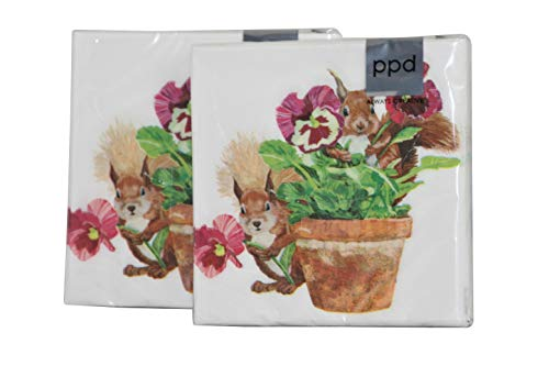 PPD 3-Ply Paper Springtime Easter Beverage Napkins 20 Count - 2 Pack (Flowerpot Squirrels)