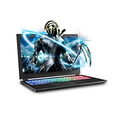 独特な SAGER NP8955 0.73 Laptop Thin & Light Gaming Laptop 1070 SAGER 15.6 FHD IPS 144Hz 5ms Display Intel Core i7-8750H NVIDIA GTX 1070 8GB DDR5 32GB RAM 500GB NVMe SSD + 1TB HDD Windows 10 Home [並行輸入品] B07HT7PB7Y, 南部町:96facad3 --- arianechie.dominiotemporario.com