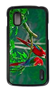 Google Nexus 4 Case,MOKSHOP Awesome lovely parrots Hard Case Protective Shell Cell Phone Cover For Google Nexus 4 - PC Black
