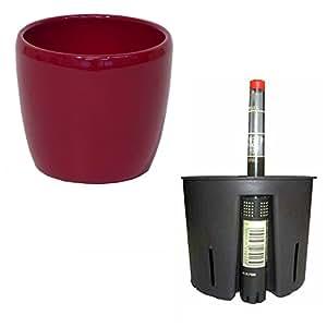 Set 3Piezas para hidroponía cerámica maceta Venus Color Rojo Diámetro 16cm H 14cm Cultura Cacerola 13/12Indicador de nivel de agua WA 12