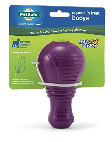 Busy Buddy Squeak N Treat Booya Dog Toy Medium