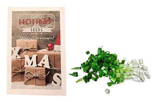 Holiday Seeds - Stocking Stuffers - UPC 600188194760 - Holiday Themed Seed Packets (Evergreen Bunching Onion) (Stocking Evergreen)