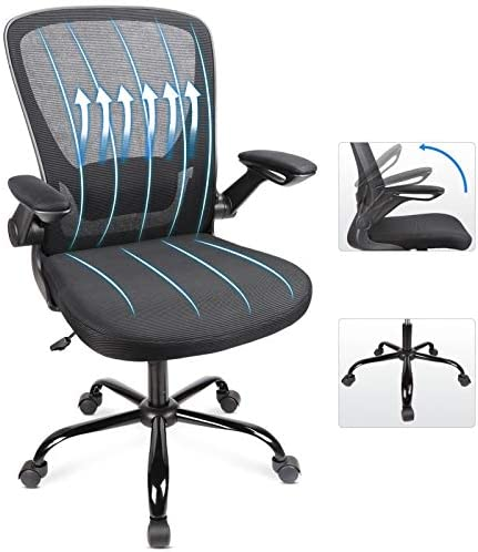 Ergousit Home Office Chair, Ergonomic Office Chair with Large Seat Cushion, Computer Desk Chair with Flip-up Arms, Task Chair with Lumbar Support Mesh Backrest,360° Rolling Wheels