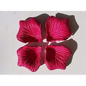 1000 pcs Various Colors Silk Flower Rose Petals Wedding Party Decorations (Dark Magenta) 16