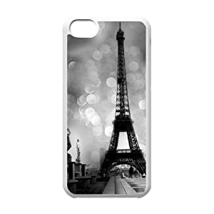Paris Tower Print ZLB530566 Customized Phone Case for Iphone 5C, Iphone 5C Case by mcsharks