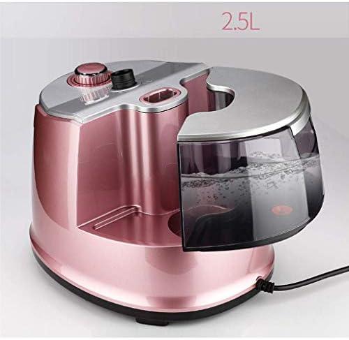 Wwwwwxw Vêtements Steamer Hanging Hot Machine Modern Fashion Portable Steam Generator 2000W Erect