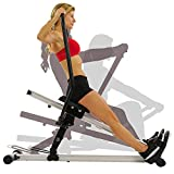 Sunny Health & Fitness Incline Full Motion Rowing