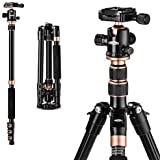 Rangers カメラ三脚 超軽量 コンパクト 安定性 アルミ合金4段 トラベル三脚 一脚可変式&自由雲台付き 野外撮影に最適 デジタルカメラ 一眼レフカメラ Canon Nikon Petax Sony等対応 RA118