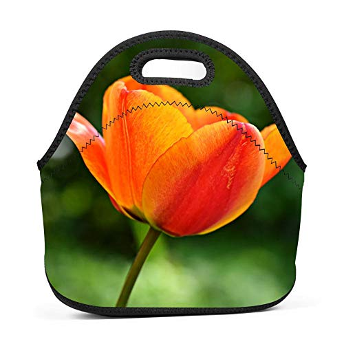 Lwbd tulip-QW4168967 Insulated Neoprene Lunch Bag Tote Handbag lunchbox Food Container Gourmet Tote Cooler warm Pouch For School work Office