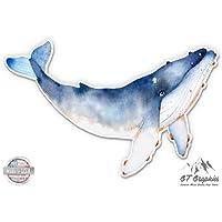 "Whale Watercolor Beautiful - 3"" Vinyl Sticker - For Car Laptop I-Pad Phone Helmet Hard Hat - Waterproof Decal"