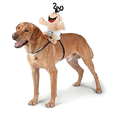 Amazon.com: Cachorro dentición Juguete Llavero colorido ...
